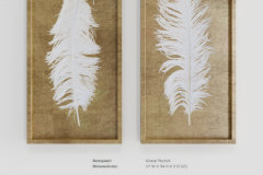Uttermost white feathers gold shadow box s2